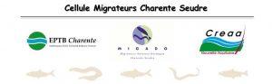 Logo Cellule Migrateurs Charente Seudre